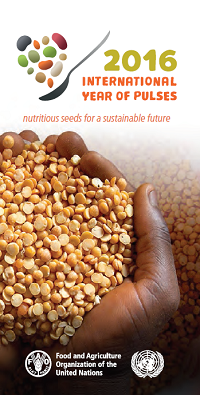 Click for full sized brochure for International Year of Pulses