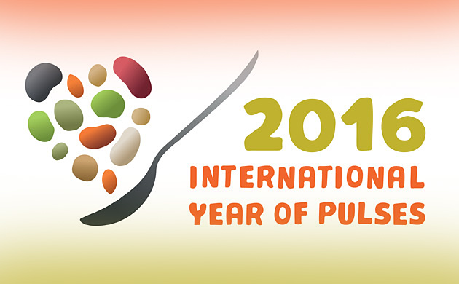 International Year of the Pulses